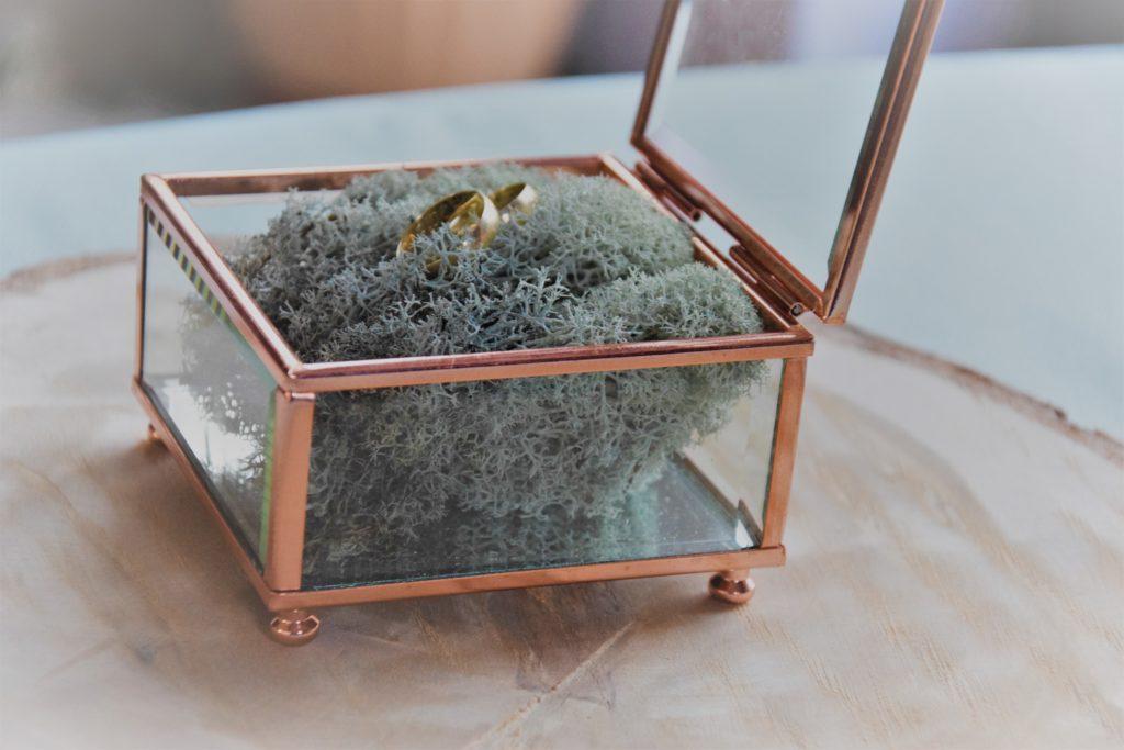 szkatułka na obrączki, szklana szkatułka, pudełko na obrączki, obrączki, mech, ślub