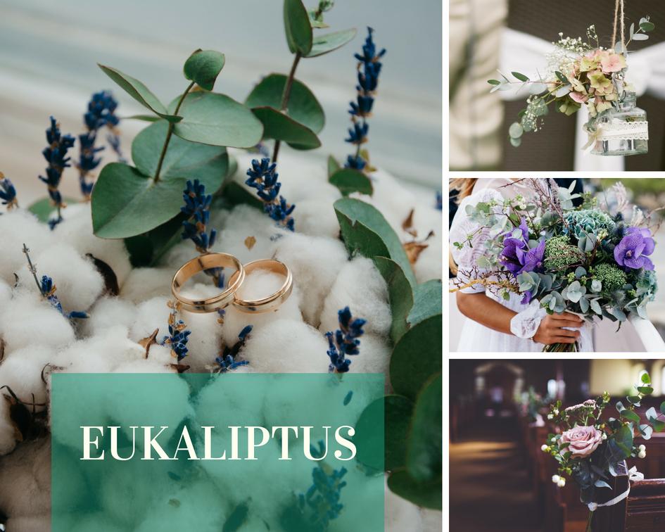 eukaliptus, kwiaty na wesele, dekoracja, zieleń, dekoracja stołu